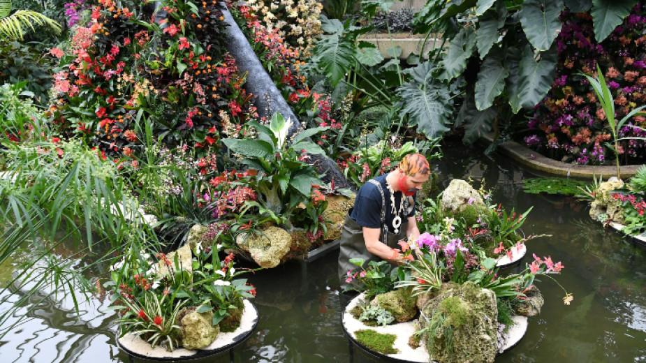 Британските кралски ботанически градини в Лондон, известна също като Kew