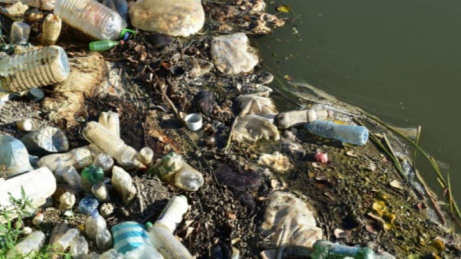Протестиращите край Крушаре изпращат в Европа материалите си за незагробените животински отпадъци