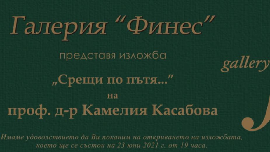 Юристът проф. Камелия Касабова, заместник-председател на 39-то и 40-то Народно