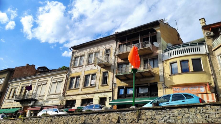 Петметрови лалета постави на знакови места във Велико Търново световноизвестният
