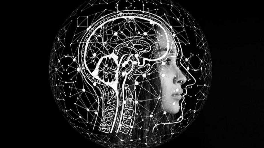 """Книгата """"Будният ум - как да развиваме ума си на"""