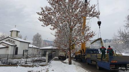 """Монтирането на новите камбани в храма """"Свети Три Светители"""" в  в Горна Оряховица."""
