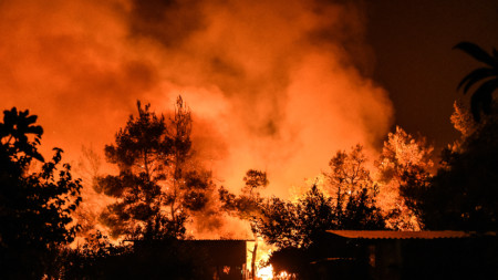 Гръцките власти са изпратили подкрепления в борбата на пожарникарите с големия горски пожар