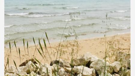 Див плаж