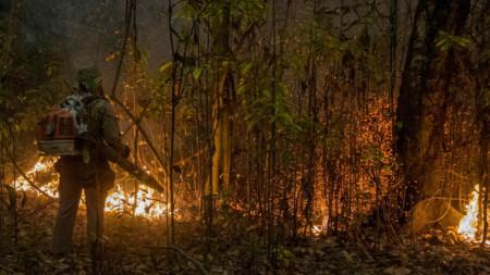 Пожар в щата Мато Гросо до Сул, 13 септември 2020 г.