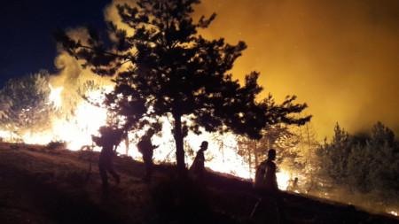 Отличията са за участие в гасене на пожари на територията на България и Република Северна Македония в периода от 31 юли до 26 август.