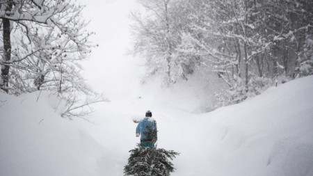 Снеговалеж, какъвто се е случва веднъж на около 20 години, затрупва Швейцария.