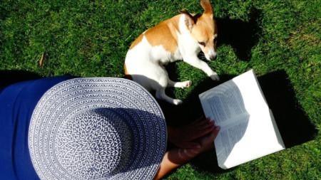 Децата четат по-дълго и са по-упорити, когато им прави компания куче