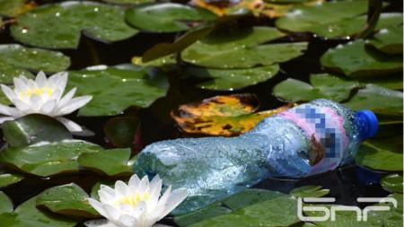 Езерото с водни лилии в парк Горубсо