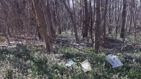 Така изглежда в някои части паркът, според организаторите на почистването