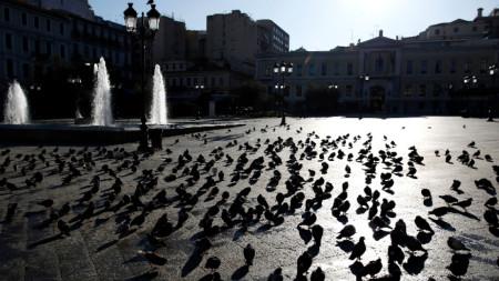 Гълъбите се разхождат по пустия площад пред кметството на Атина, 02 април 2020 г.