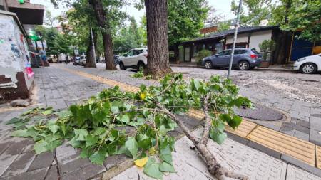 София, 20 юли 2021 г. Оранжев код за валежи е обявен за София-област.