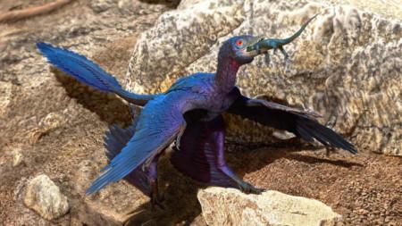 Илюстрация как Microraptor zhaoianus поглъща гущер, наречен Indrasaurus wangi.