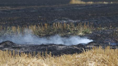 Засега няма опасност за къщите в селището, но силният вятър прави трудно овладяването на пожара