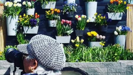 Входът към градината на щастието в Кукенхоф