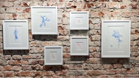 """""""Bodies of Land"""", изложба в галерия """"Little Bird Place"""""""