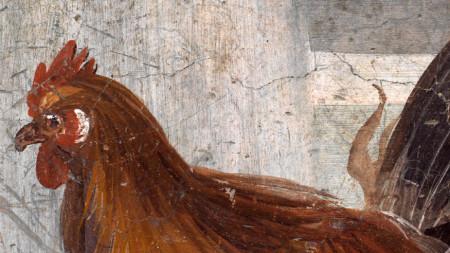 Фреска от новооткрития термопилиум в Помпей, Италия. Обектът ще бъде отворен за посетители по Великден догодина. Той се се намира на ъгъла между Vicolo dei Balconi и Via della Casa delle Nozze d`Argento.