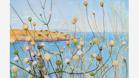 На Варвара вятъра, художник: Елена Стоева