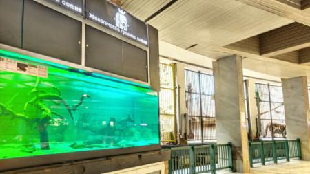 Сайтът ва Софийския зоопарк предлага и виртуална разходка
