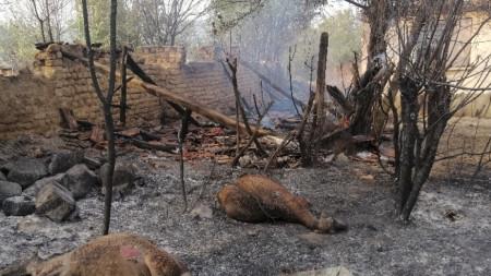 Пораженията след пожара в Старосел - 4 август 2021 г.