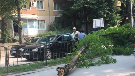 В колата е имало и малко дете. Собственикът на пострадалия автомобил е потърсил помощ на спешния телефон 112, но е бил прехвърлен към застрахователите.