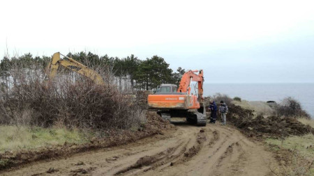 """Борова гора край къмпинг """"Арапя"""" се изсича за строителството на 6 двуетажни вили"""