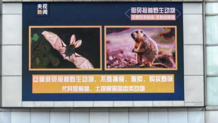 Рекламно пано на фасадата на търговски център призовава да не се ловуват, ядат, купуват и продават диви животни заради заразата от коронавирус. Гуанджоу, Китай, 30 март 2020 г.