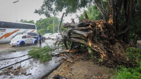 Последици от урагана Нора в Акапулко.