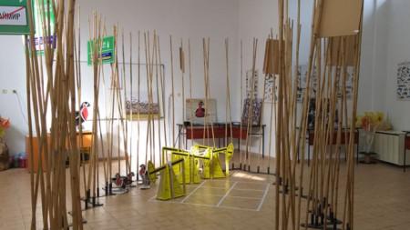 Интерактивна изложба, посветена на защитения вид червеногушата дива гъска