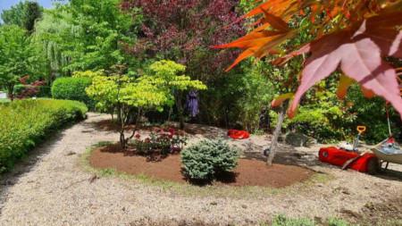Японската градина по време на ремонта