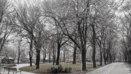 Първите за зимата снежинки се опитаха днес да оставят следи във Видин...