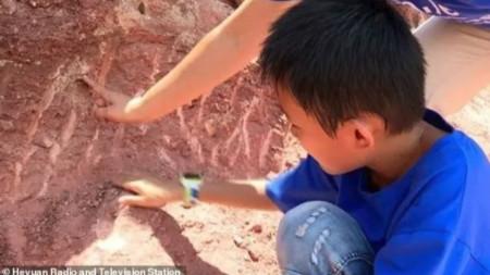 Момчето намерило яйцата след наводнение, което размило почвата.