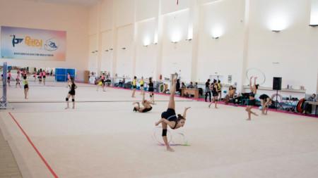 Димитър Бербатов подкрепи кампанията  на БФХГ за създаването на възстановителен център за състезателките ни
