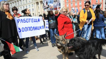 Участници в протеста пред Министерски съвет срещу нарастващата агресия към животни.