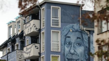 Фасада с лика на Айнщайн в столичния Студентски град