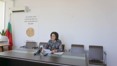 Веселка Асенова, началник на Регионално управление на образованието - Видин