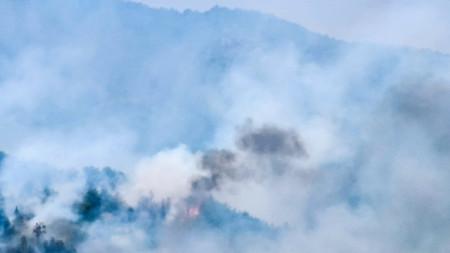 Пожар в село Голешово