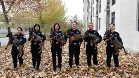 Силите на реда в Пекин получиха 6 клонирани кучета със специални умения.