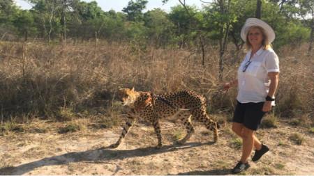 Мая Кикерезова постига детската си мечта – да води гепард на каишка.