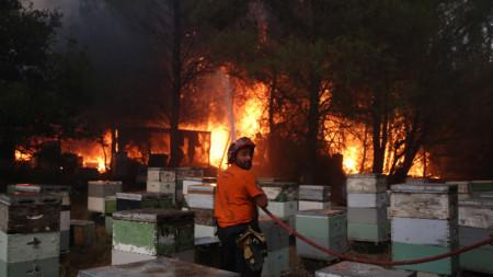 Пожар в предградие на Атина, 3 август 2021 г.