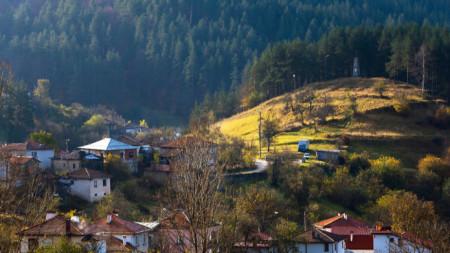 село Полковник-Серафимово