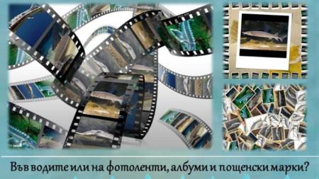Постер на Светослав Ангелов от Видин.