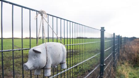 Играчка-прасенце е закачена на оградата по границата между Дания и Германия, изградена, за да спира преминаването на диви прасета и разпространението на АЧС