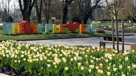 Цветните градини в различни форми се радват на интерес от плевенчани и гостите на града.