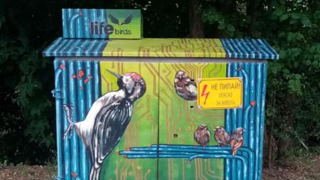 За да привлече общественото внимание към опазването на птиците, ЧЕЗ Разпределение организира конкурс за рисунки върху улични разпределителни касети в Западна България.