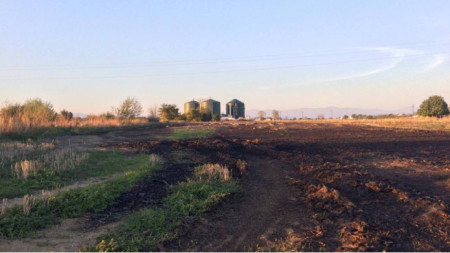 Местни ловци алармират, че дивечът в района около централата намалява и изчезва.