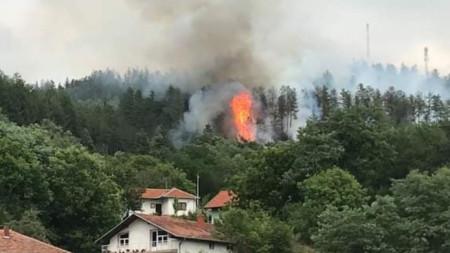 Трети ден гори пожар над Босилеград, алармираха наши сънародници в Сърбия; Снимка: Глас прес