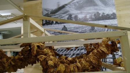 """Кадър от изложбата """"ДИМ. Истории за тютюна"""" в Тютюневия град, Пловдив"""