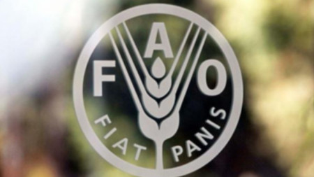 Организация по прехрана и земеделие към ООН