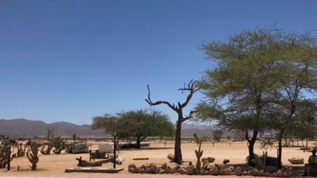 В Намибия пейзажите се сменят през 10 минути